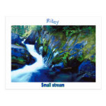 Names&Meanings - Riley Postal