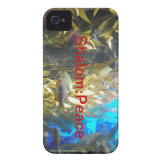 Names of GOD - Shalom: Peace Case-Mate iPhone 4 Case