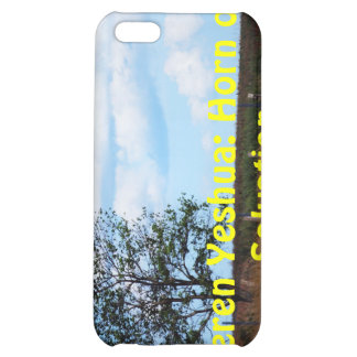 Names of GOD with Meanings iPhone 5C Cases