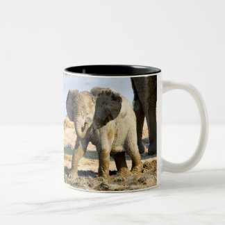 Namibia, Africa: Baby African Elephant Coffee Mug