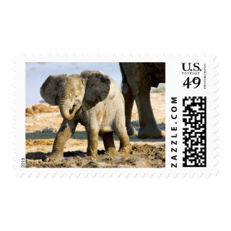 Namibia, Africa: Baby African Elephant Postage