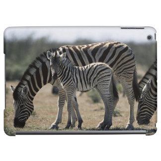 Namibia, Etosha National Park, Plain Zebra 1 iPad Air Cases