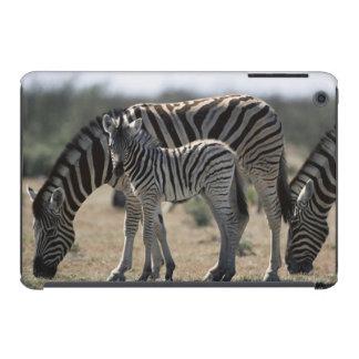 Namibia, Etosha National Park, Plain Zebra 1 iPad Mini Retina Cover
