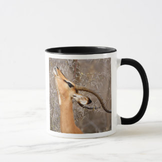 Namibia, Etosha NP.  Black Faced Impala Mug