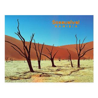 Namibia Sossuslvei Postcard