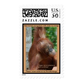 Naming My Favorite Things orangutan stamp
