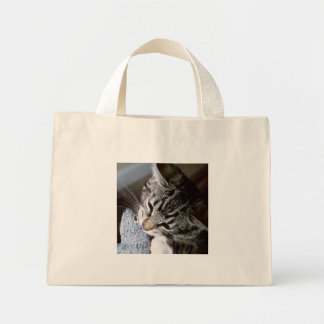 nancy with mouse mini tote bag