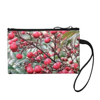 Nandina arbusto con las bayas maduras rojas