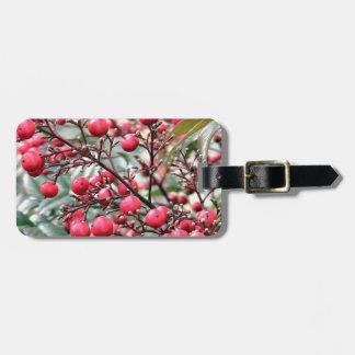 Nandina arbusto con las bayas maduras rojas etiquetas bolsas