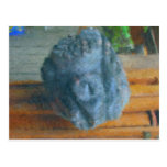 nanibush rock_Painting Postal