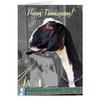 Nanny Goat Thanksgiving card
