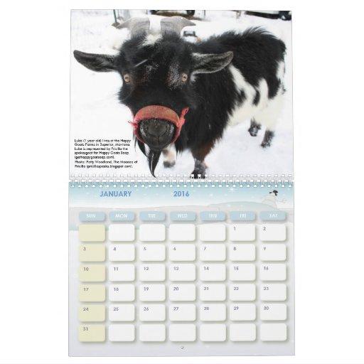 Nanny Goats in Panties, 2011 Calendar