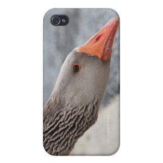 Nanny Goose Loves to Talk Case For iPhone 4
