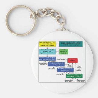 Nanopore Detector Markov Model Software Scheme Keychain