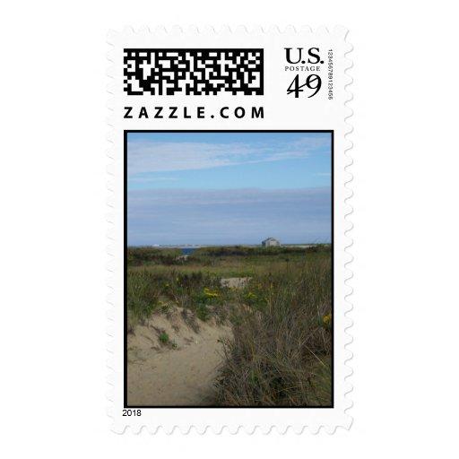 Nantucket Beach Grasses Stamp