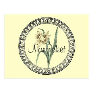 Nantucket Daffodil Parade Postcard