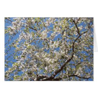 Nantucket Garden Greeting Card