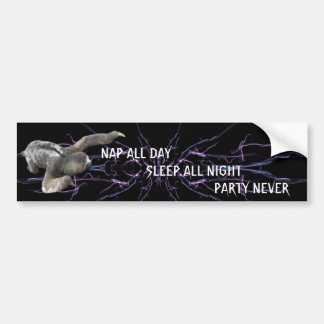 Nap all day, sleep all night, party never bumper sticker