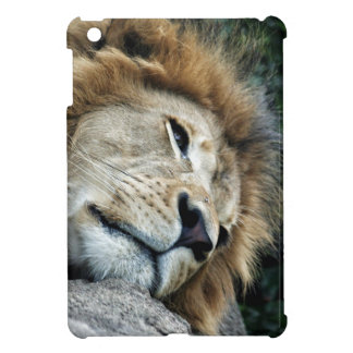 Nap iPad Mini Covers