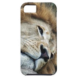 Nap iPhone SE/5/5s Case