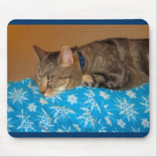 Nap Time For Indigo Mouse Pad