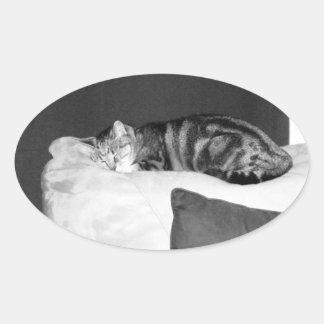 Nap Time For Indigo Oval Sticker
