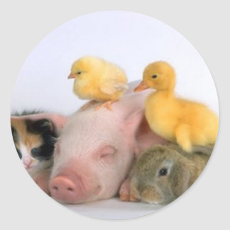 Nap Time for the Animals Classic Round Sticker