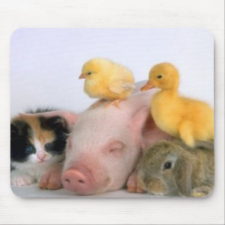 Nap Time for the Animals Mouse Pad