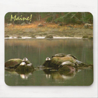 Nap Time Mouse Pad