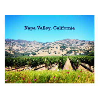 Napa Valley, California Postcard
