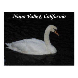Napa Valley, California Postcard