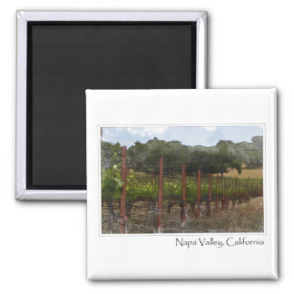 Napa Valley California Vineyard Postage Magnet