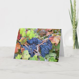 Napa Valley Harvest Greeting Card card