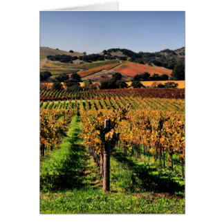 Napa Valley Vineyard Card