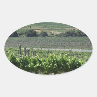 Napa Valley Vineyard Oval Sticker