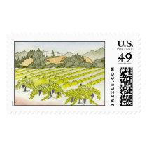 Napa Valley Vineyard Postage
