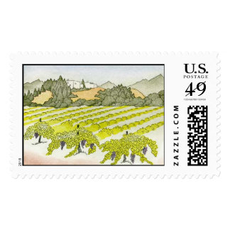 Napa Valley Vineyard Postage