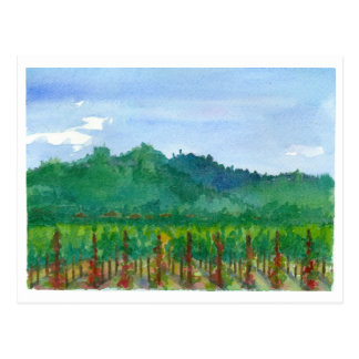 Napa Valley Vineyard Red Roses Watercolor Painting Postcard
