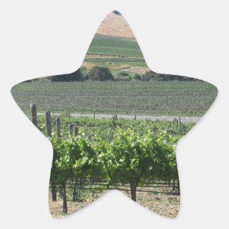Napa Valley Vineyard Star Sticker