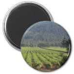 Napa Valley Vineyards I Fridge Magnets