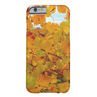 Napa Valley Wine Country in the Fall Barely There iPhone 6 Case