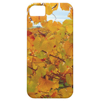 Napa Valley Wine Country in the Fall iPhone 5 Covers