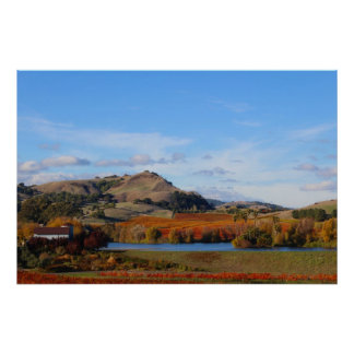 Napa Valley Wine Country in the Fall Posters