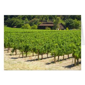 Napa Valley Winery Vineyard Card