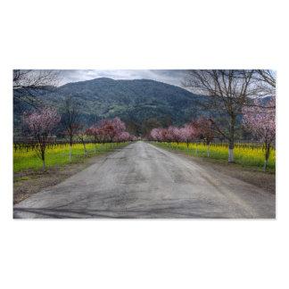 Napa Vineyard Road Business Card