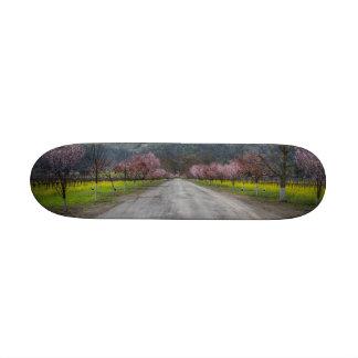 Napa Vineyard Road Skate Board Deck