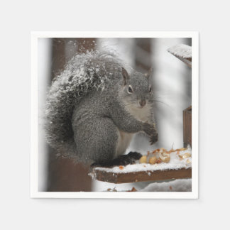 Napkin - Squirrel eating nuts