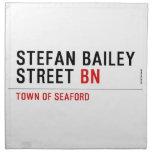 Stefan Bailey Street  Napkins