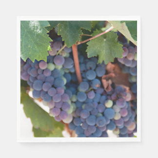 Napkins / Paper - Grapes on the Vine