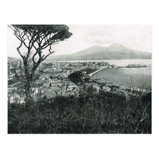 Naples, 1908, Bay of Naples and Vesuvius from hill Postcard
